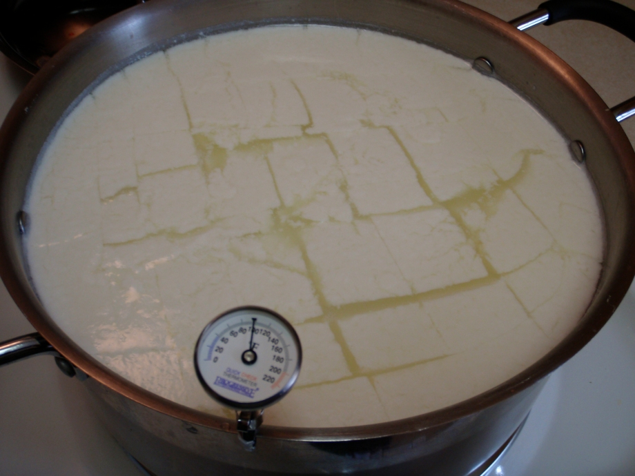 cooking the cut curds for mozzarella- as you can see, to 110F